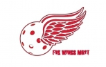 FBK Wings Most